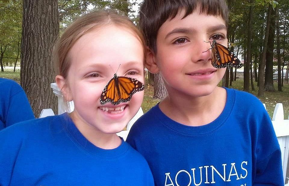 kids and monarchs